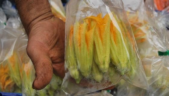 «Fiori di Zucca», wie sie auf dem Markt erhältlich sind.
