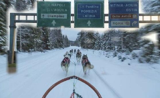 Hundeschlitten auf Autobahn nach Rom.