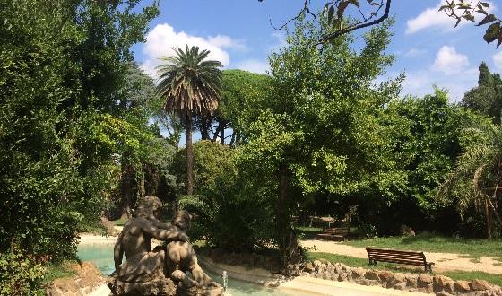 Monteverde und deine grüne Umgebung